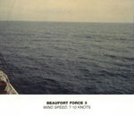Beaufort Scale - Force 3