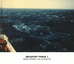 Beaufort Scale - Force 7