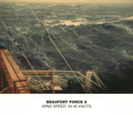Beaufort Scale - Force 8